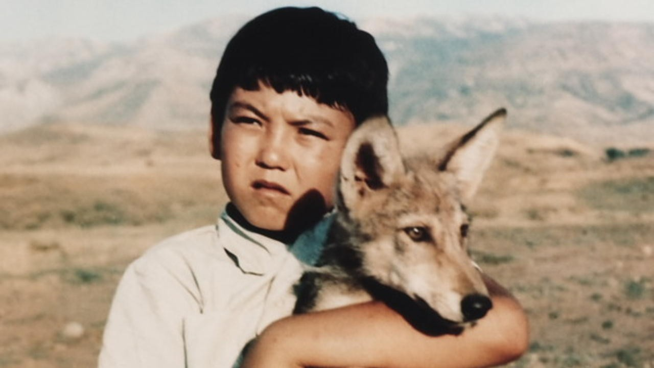 Wolf Cub Among People