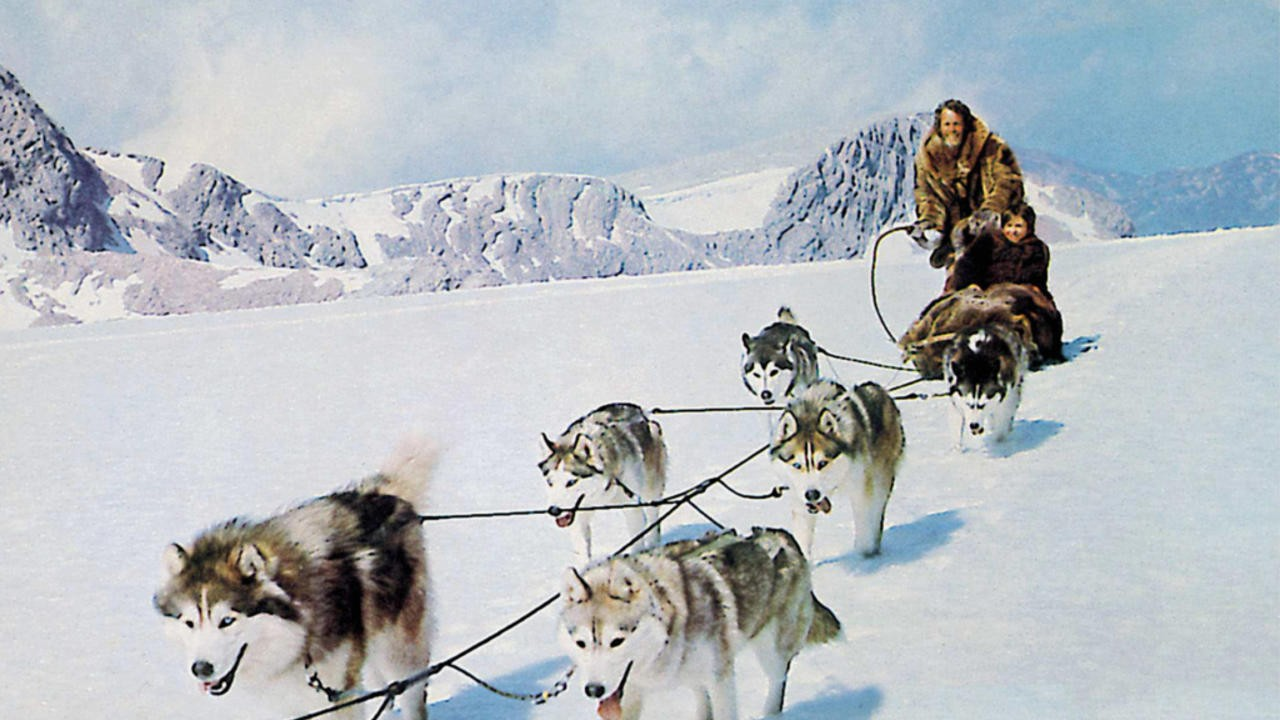 Hell Hounds of Alaska